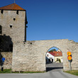 Foto Stock: Old and picturesque city of visby