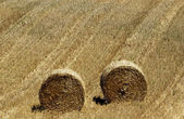 France, bales of straw in Normandie — Stock Photo