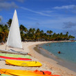 Stock Photo: France, Sainte Anne in Guadeloupe