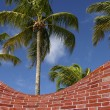 Palm trees and brick wall fake - Stock Photo