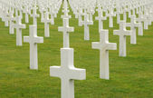 American cemetery of Colleville sur Mer in Normandy — Foto de Stock