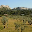 Typical landscapes of Les-Baux-de-Provence — Zdjęcie stockowe