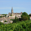 Stock Photo: Gironde, vineyard of Saint Emilion in Aquitaine