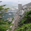 Stock Photo: Portugal, moorish castle in Sintra