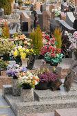 Francia, il cimitero di triel sur seine — Foto Stock