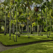 France, the picturesque Habitation Anse Latouche garden in Marti — Stock Photo