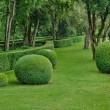 Perigord, the picturesque garden of Marqueyssac  in Dordogne — Stockfoto
