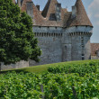 Perigord, the picturesque castle of Monbazillac in Dordogne — Stock Photo #32681133