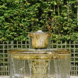 Fountain in Versailles Palace park  — Stock Photo