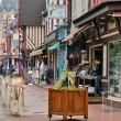 Stock Photo: City of Houlgate in Normandie