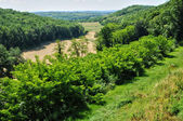 Landscape of Sainte Mondane in Perigord — Stock Photo