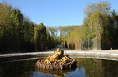 France, a fountain in the Versailles Palace park — Foto de Stock