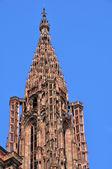франция, собора страсбурга в эльзас — Стоковое фото