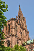 France, cathedral of Strasbourg in Alsace — Stock Photo