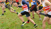 France, cross country running of les mureaux in les Yvelines — Foto Stock