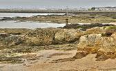 Coast of Pornichet in Loire Atlantique — Stock Photo