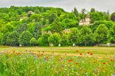 Frankrijk, het schilderachtige dorpje van vetheuil — Stockfoto