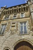 Picturesque castle of Talcy in Loir et Cher — Stock Photo