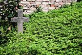 Gamla övergivna grav — Stockfoto