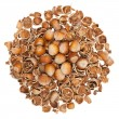 Nuts and empty nutshells — Stock Photo