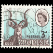 Rhodesian post stamp - Stock Photo