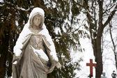 Statue de la vierge marie — Photo