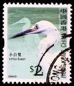 中国切手切手 — ストック写真