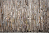 Old bamboo fence — Stock Photo