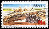 гербовая марка из республики южная африка — Стоковое фото