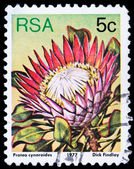 Post stamp from South Africa Republic — Stock Photo