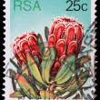 Post stamp from Republic of South Africa — Stock Photo #28265189