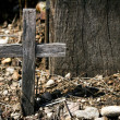 Hill of Crosses — Stock Photo #30144815