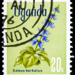 Post stamp from Uganda — Stock Photo