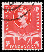 Post stamp from East Africa — Stock Photo
