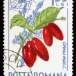 Romanian post stamp — Stock Photo #36783549