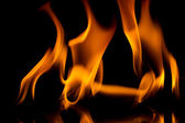Fire flames    — Stock Photo