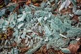 Broken glass on the ground  — Stockfoto