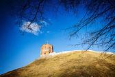 Torre di gediminas — Foto Stock