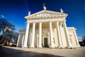 The Cathedral of Vilnius  — Stock fotografie