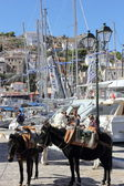 Transportation in Hydra island, Greece — Stock Photo