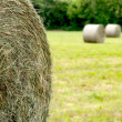 Hay roll foreground and background 2 hay rolls - Stock Photo