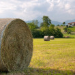 Hay roll foreground and background rural house - Stock Photo