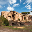 Ancient Domus Severiana at Monte Palatino - Roma - Italy - Stock Photo