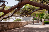 Under the trees on square near Frankopan fortress at Krk - Croat — Stock Photo