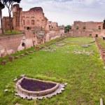 Palatine stadium ruins in palatine hill at Rome — Stock Photo #21667217