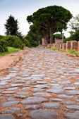 Old roman stony street at Ostia Antica - Rome — Stock Photo