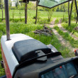 Woods and grassland fields view from inside tractor — 图库照片