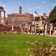Постер, плакат: Atrium vestae at Roman forum
