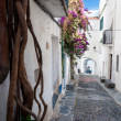 Streets plants and  arcs inside Cadaques town — Stock Photo