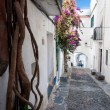 Stock Photo: Streets plants and arcs inside Cadaques town